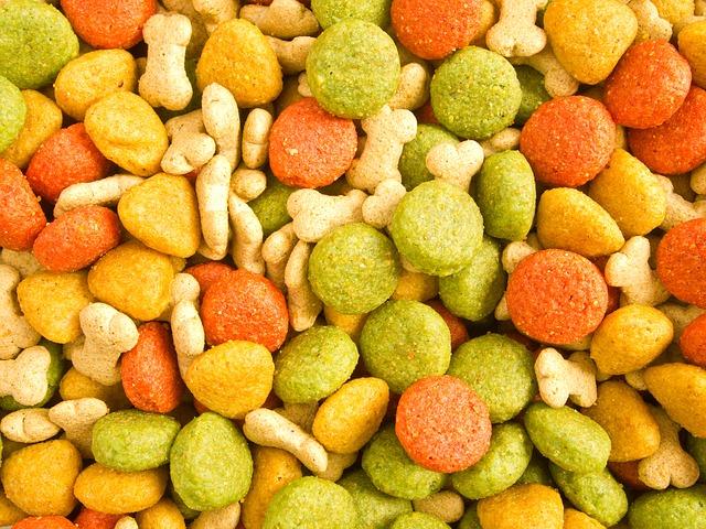 guinea pigs should not eat dog food